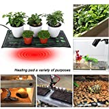 Ridgeyard Seedling Heat Mat 10'' x 20'' Waterproof Hydroponic Seedling Plant Mat Seed Starter Propagation for Seedling, Cloning, Cutting, Rooting, and Germination in Home Garden