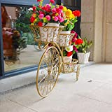 Ronghuafugui Flower Racks Bicycle Shaped Iron Art Floorstanding Multilayer Living Room Balcony Indoor And Outdoor Green Plant Flower Stand(76.5 * 20 * 60CM) (Color : Gold)