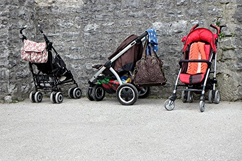 Home Comforts Peel-n-Stick Poster Vehicle Child Sun Buggy Baby Carriage Buggies Poster 24X16 Adhesive Sticker Poster Print