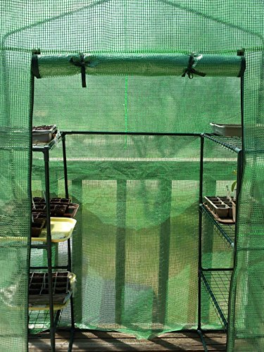 Quictent Mini Walk-in Greenhouse 4 tiers 6 Shelves Portable Small Green Grow Garden plant Plastic House 78