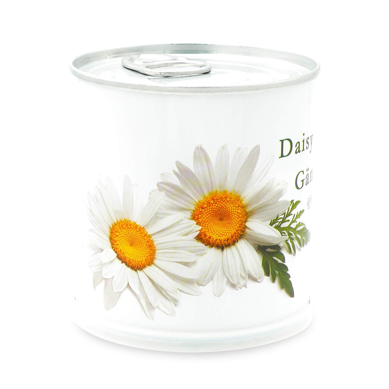 MacFlowers Gänseblümchen/Margeriten - Blumen in der Dose