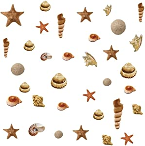 Lunarland Seashells 41 Big Wall Decals Beach Sea Shells Starfish Sand Dollar Decor Sticker