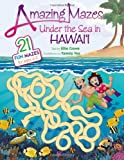 img - for Amazing Mazes Under the Sea in Hawaii book / textbook / text book
