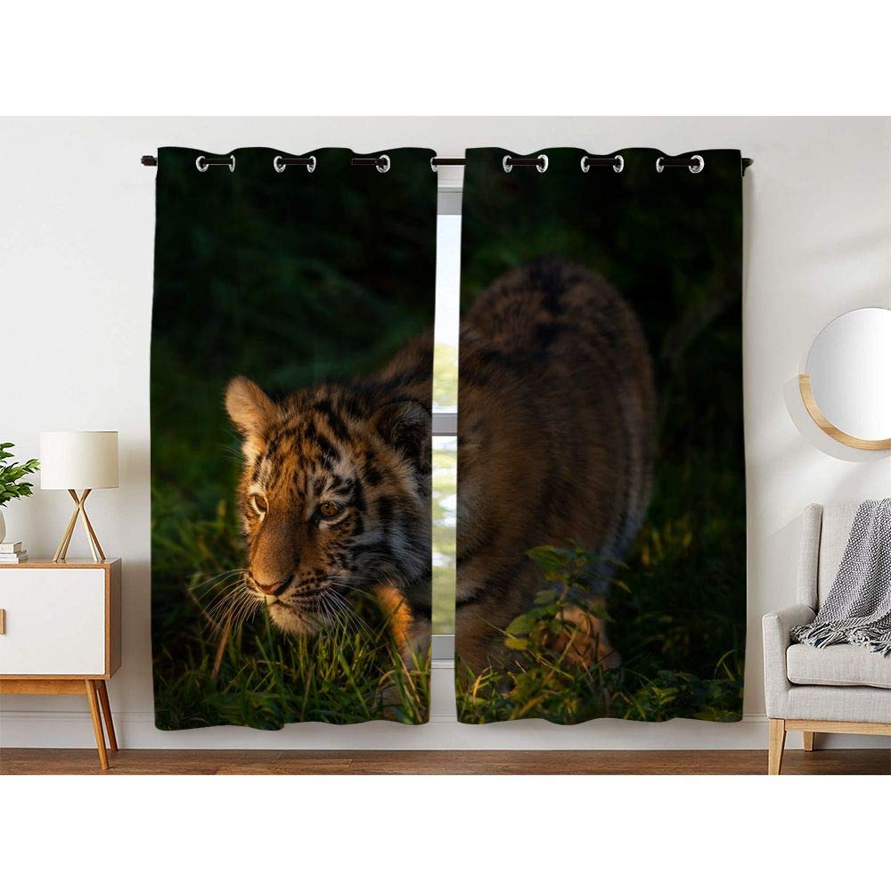 HommomH 54 x 84 Inch Tiger Cub Curtains (2 Panel) Grommet Top Blackout Shade Room Looking for Food in The Forest by HommomH
