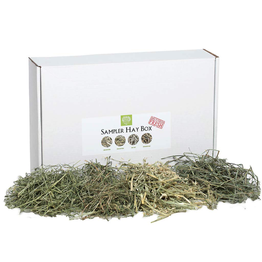 Small Pet Select-Sampler Box, 2ND Cutting, 3RD Cutting Timothy Hay, Oat Hay, & Orchard Hay by Small Pet Select