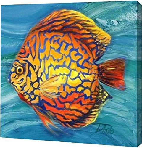 "PrintArt GW-POD-34-9213C-30x30 ""Vibrant Sea Life IV"" by Patricia Pinto Gallery Wrapped Giclee Canvas Art Print, 30"" x 30"""