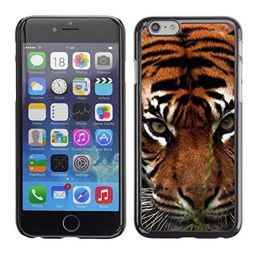 """Premio Sottile Slim Cassa Custodia Case Cover Shell // V00003921 tigre agression // Apple iPhone 6 6S 6G 4.7"""""""
