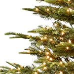 Puleo-International-65-Foot-Pre-Lit-Aspen-Green-Fir-500-UL-Clear-Lights-Artificial-Christmas-Tree-Ft