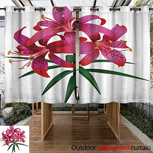RenteriaDecor Outdoor Curtain for Patio Photorealistic Illustration of red Tiger Lily Isolated on White Background W63 x L72 (Tiger Drapes Lily)