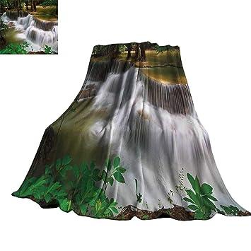Amazon.com: RenteriaDecor - Manta de árbol de hierbas en ...