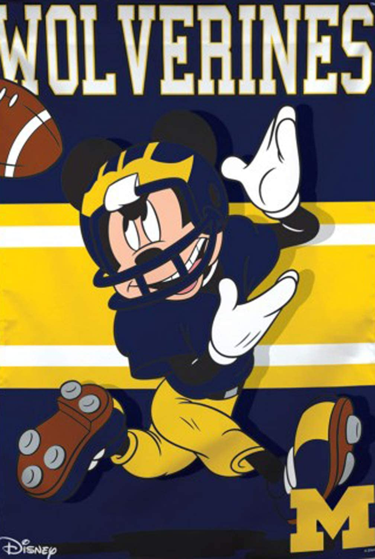 NCAA University of Michigan 8234911782349117 28 x 40 Multicolor