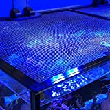 DELTEC USA DD Aquatics DD Jumpguard PRO DIY Net