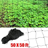 DGCUS Bird Netting Fruit Tree Protective Net Pests Block Poultry Aviary Pen 50'X50'