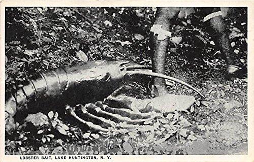 Buy lobster in new york