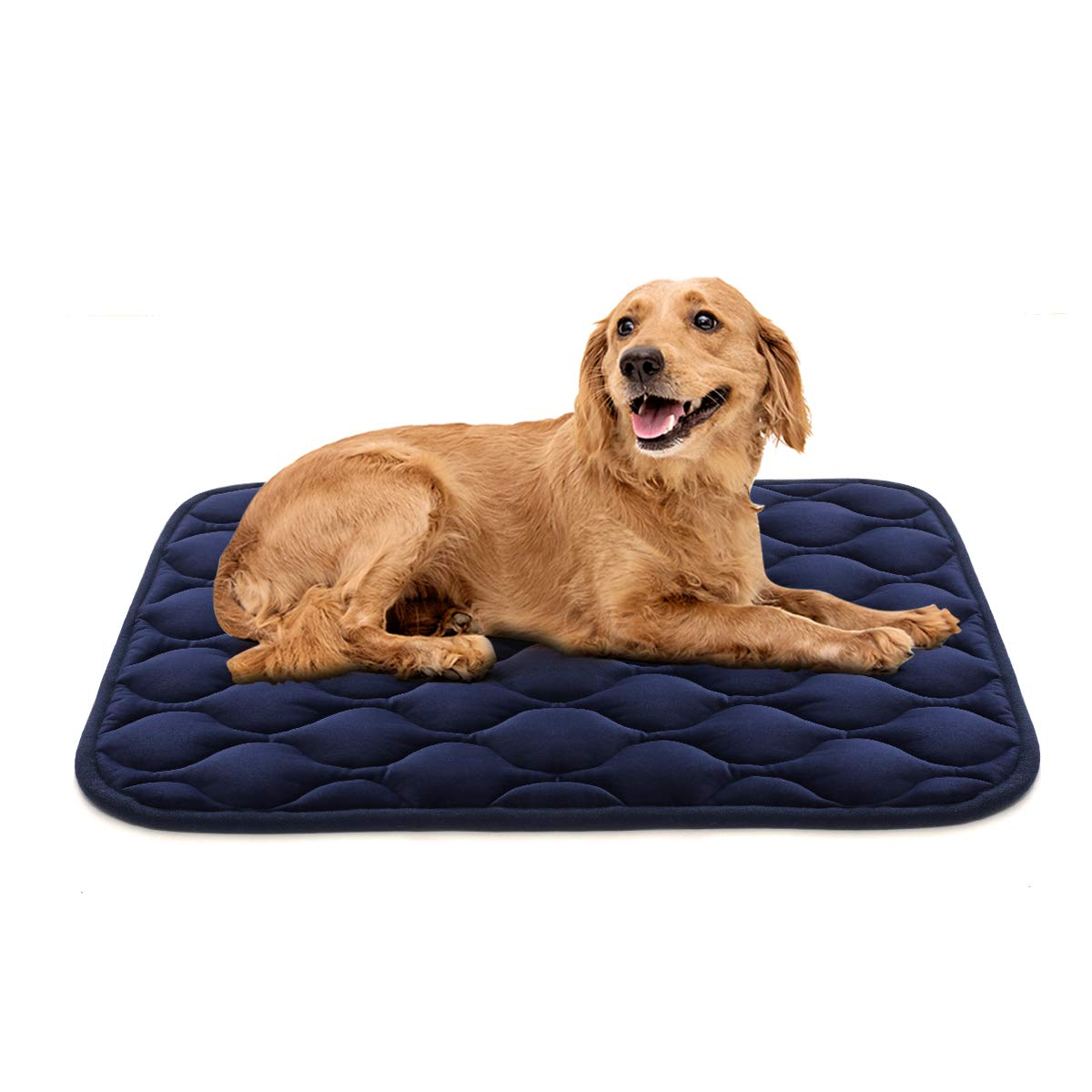 AIPERRO Dog Crate Pad Washable Dog Bed Mat Dog Mattress Pets Kennel Pad for Large Medium Small Dogs and Cats, 42'' x 27''