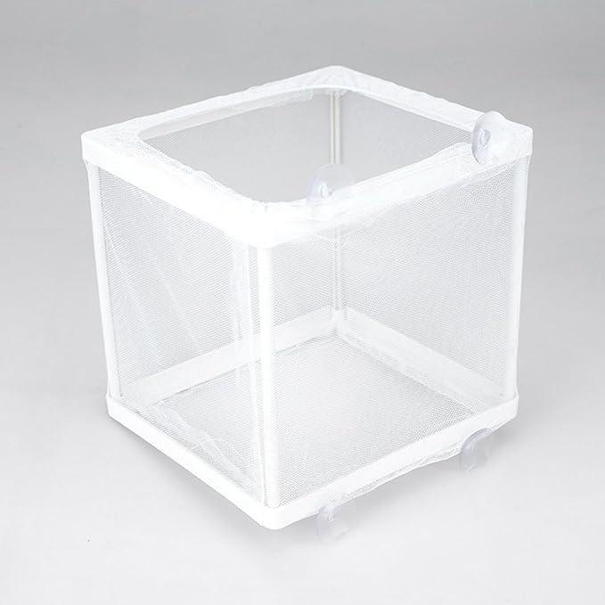 SADA72 - Red para Acuario o pecera, para incubadora de Acuario, con Marco de plástico, para aislar, Show, 26 x 15 x 18cm: Amazon.es: Hogar