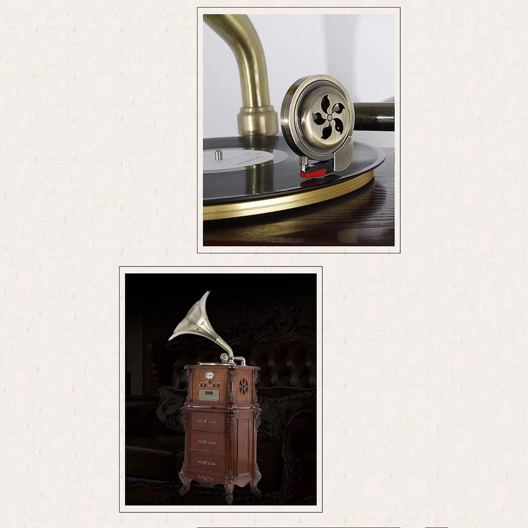 Amazon.com: RAPLANC - Reproductor de vinilo, retro ...