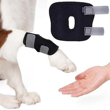 Ksruee 2pcs Pet Supplies Elbow Protector Schutz Hund Beine Brace