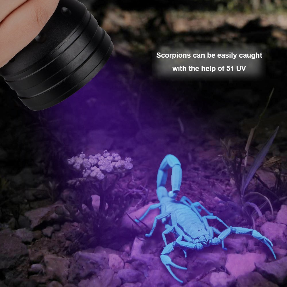 DaskFire Ultraviolet Flashlight, Blacklight Flashlight 51 LED UV Lights for Pet Dog Cat Urine Stain Detector or Bed Bugs Scorpions Home Hotel Pest Control Inspection by DaskFire (Image #5)