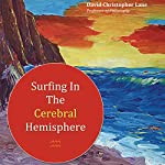 Surfing in the Cerebral Hemisphere: Rogue Waves of Information | David Christopher Lane