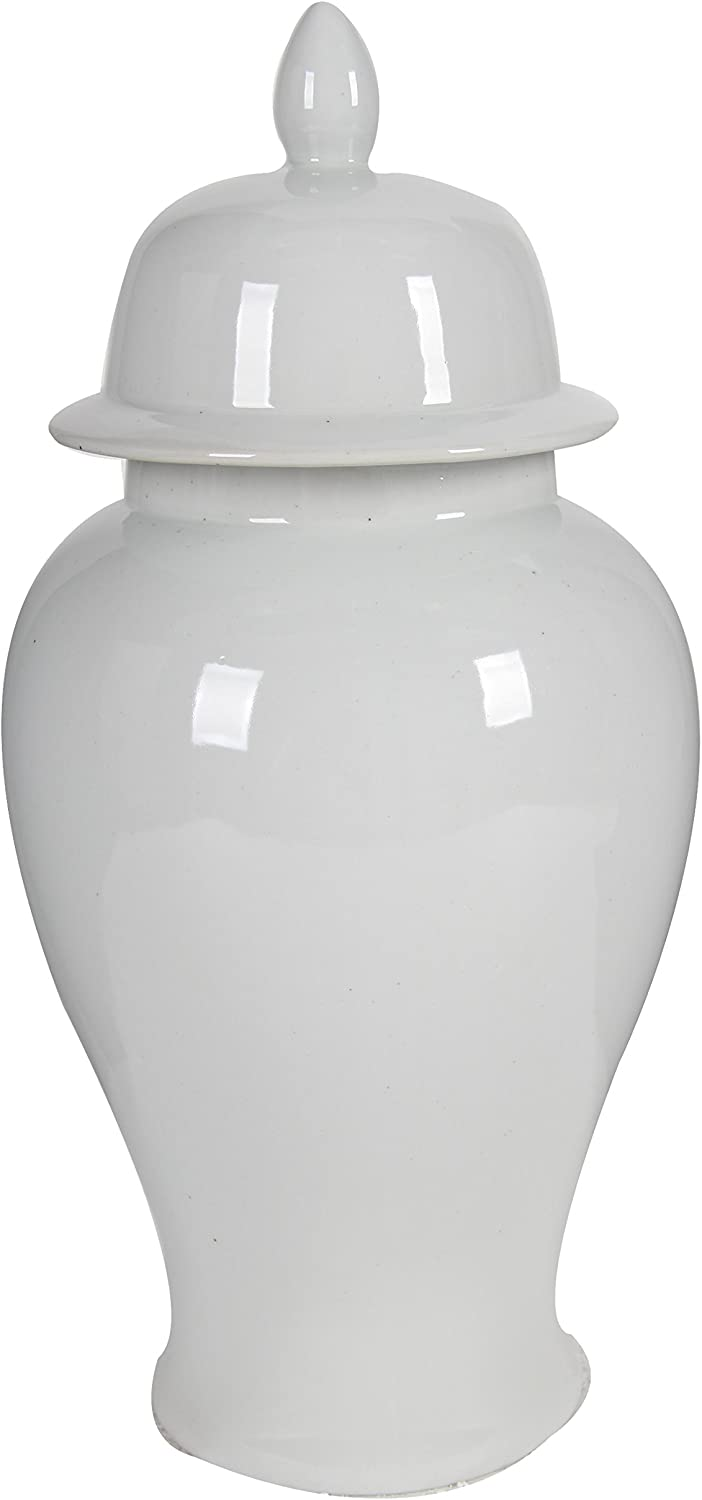 A&B Home Ginger Jar, 9.8 by 20-Inch