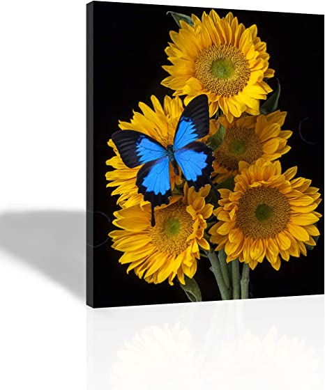 Amazon Com Purple Verbena Art 12 X16 Framed 5 Yellow Sunflowers With 1 Blue Butterflies Prints On Canvas Painting Modern Giclee Canvas Prints Artwork Abstract Landscape 1 Panel Painting For Home Decor Posters