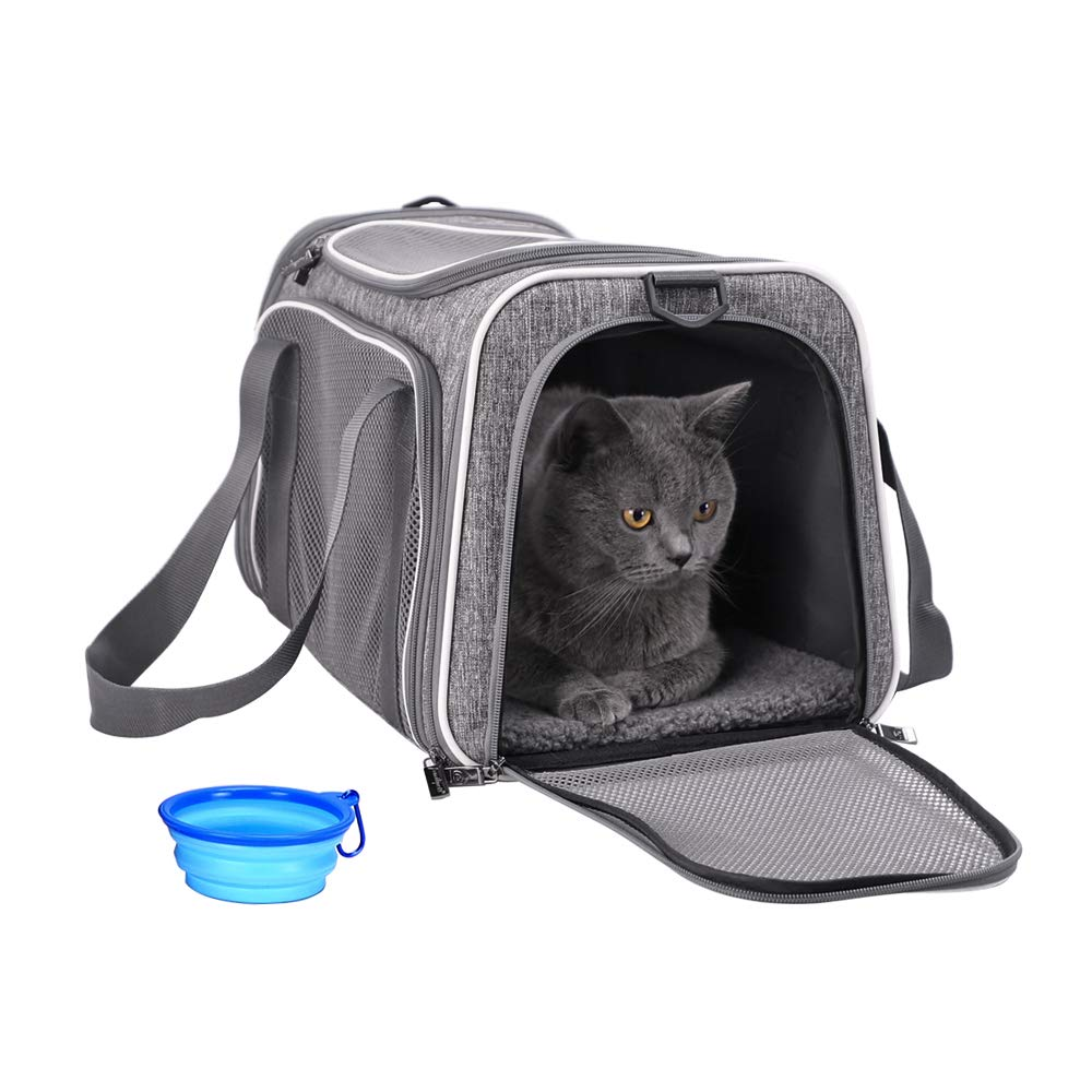 petisfam Pet Carrier for Cats and Dogs Up to 16 lbs by petisfam