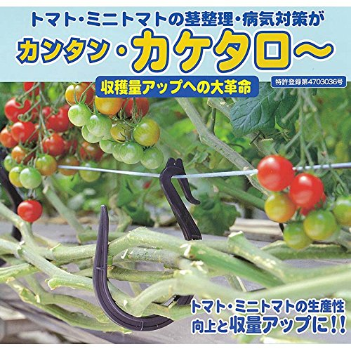 【800個(100個×8袋) 】 カケタロー TAR-800 カケタロ~ シーム 代不 B01EFCPIWI