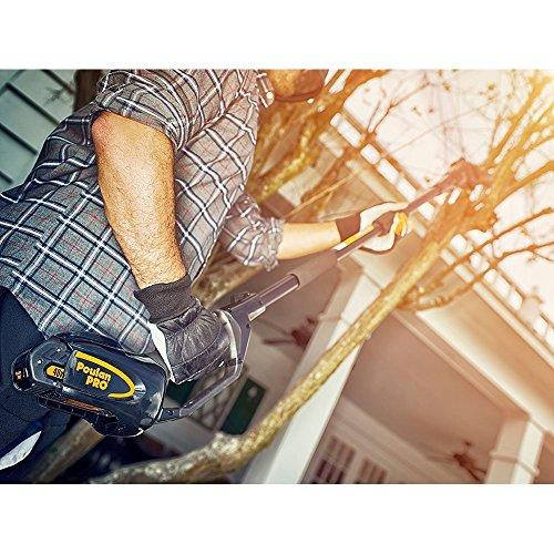 Poulan-Pro-PPB40PS-8-Cordless-Pole-Saw-40V 967044201 pole saw