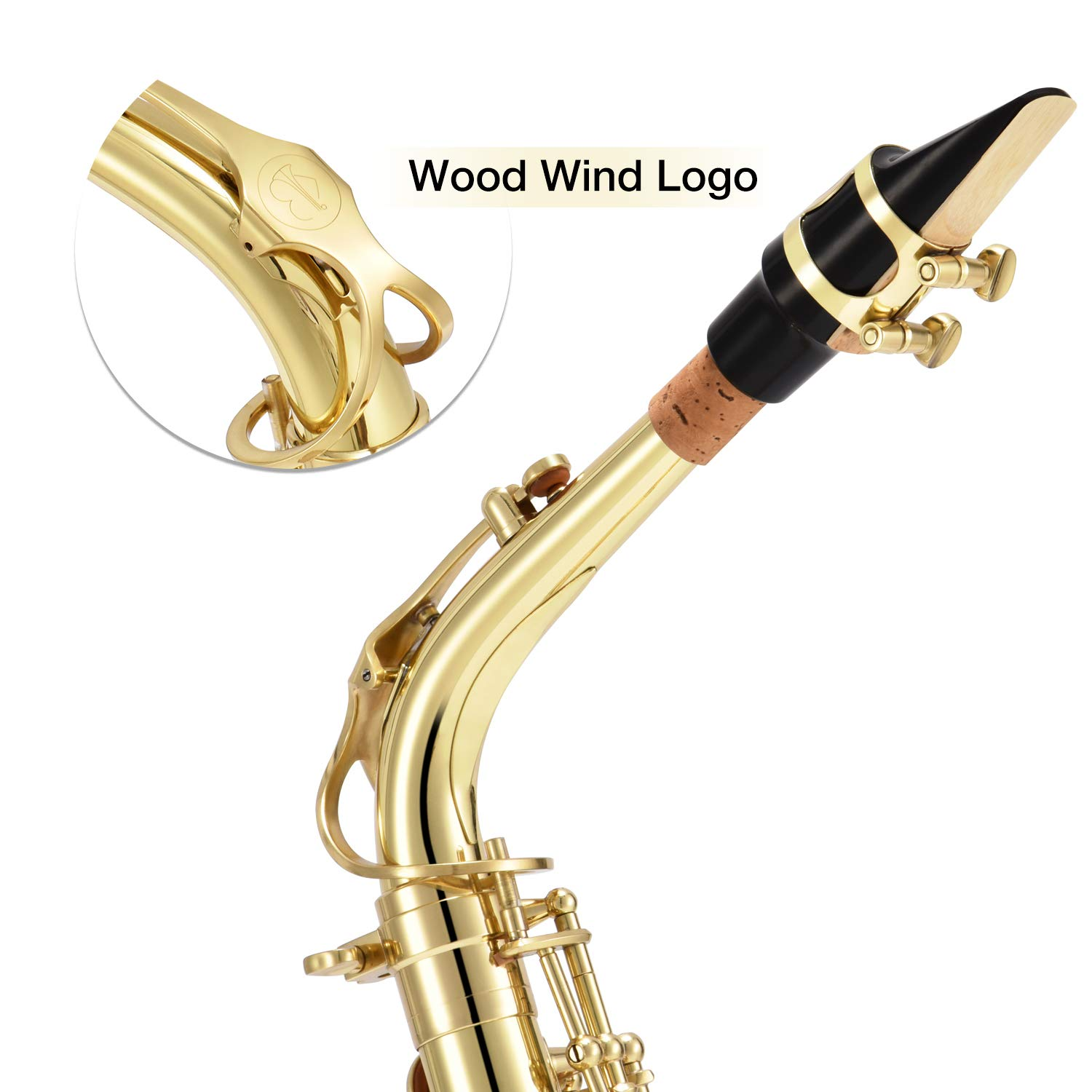 Eastar AS-Ⅱ Student Alto Saxophone E Flat Gold Lacquer Alto Sax Full Kit With Carrying Sax Case Mouthpiece Straps Reeds Stand Cork Grease by Eastar (Image #4)