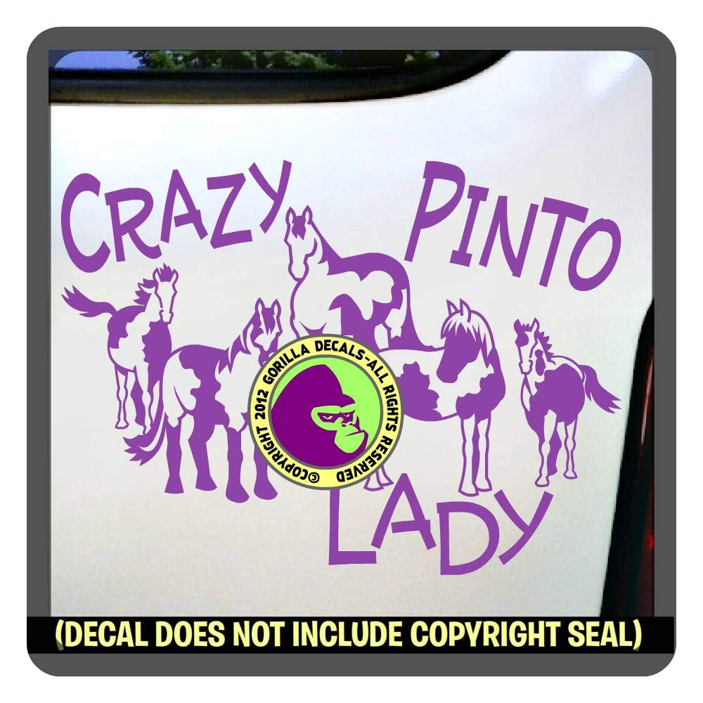 CRAZY PINTO LADY Horses Vinyl Decal Sticker D