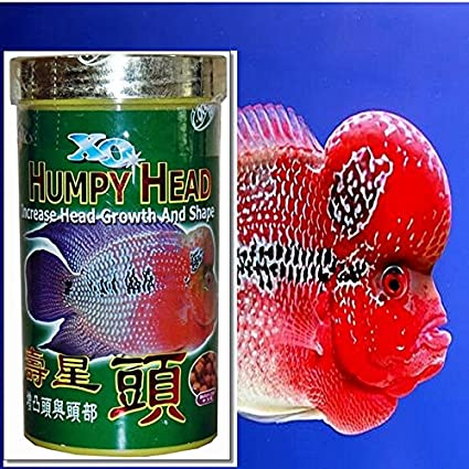 Fish Food Increase Head Growth Flowerhorn Xo Ocean Free 120 G / 4 23 Oz  Pallet Size Medium