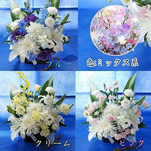 フラワー ギフト お祝い Congratulations アレンジメント おめでとう!の気持ちを込めて 季節のお花を使った生花 フラワーアレンジメント Congratulationsピック付 B01J17PPQ6
