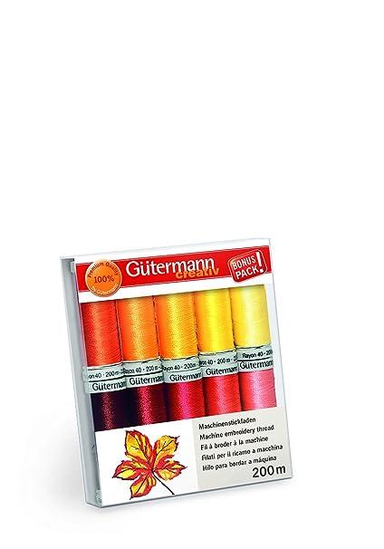 Amazon Gutermann Rayon 40 Autumn Sunrise Machine Embroidery