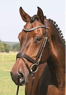 Warmblut schwarz//messing Hans Melzer Horse Equipment Z/ügel feingummiert