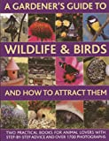 A Gardener's Guide to Wildlife and Birds and How to Attract Them, Christine Lavelle and Michael Lavelle, 0857236539