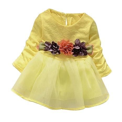 6cbbe5443 Ropa bebé Amlaiworld Niñas bebé Flor Manga larga Partido Vestido princesa  (6-12 Mes