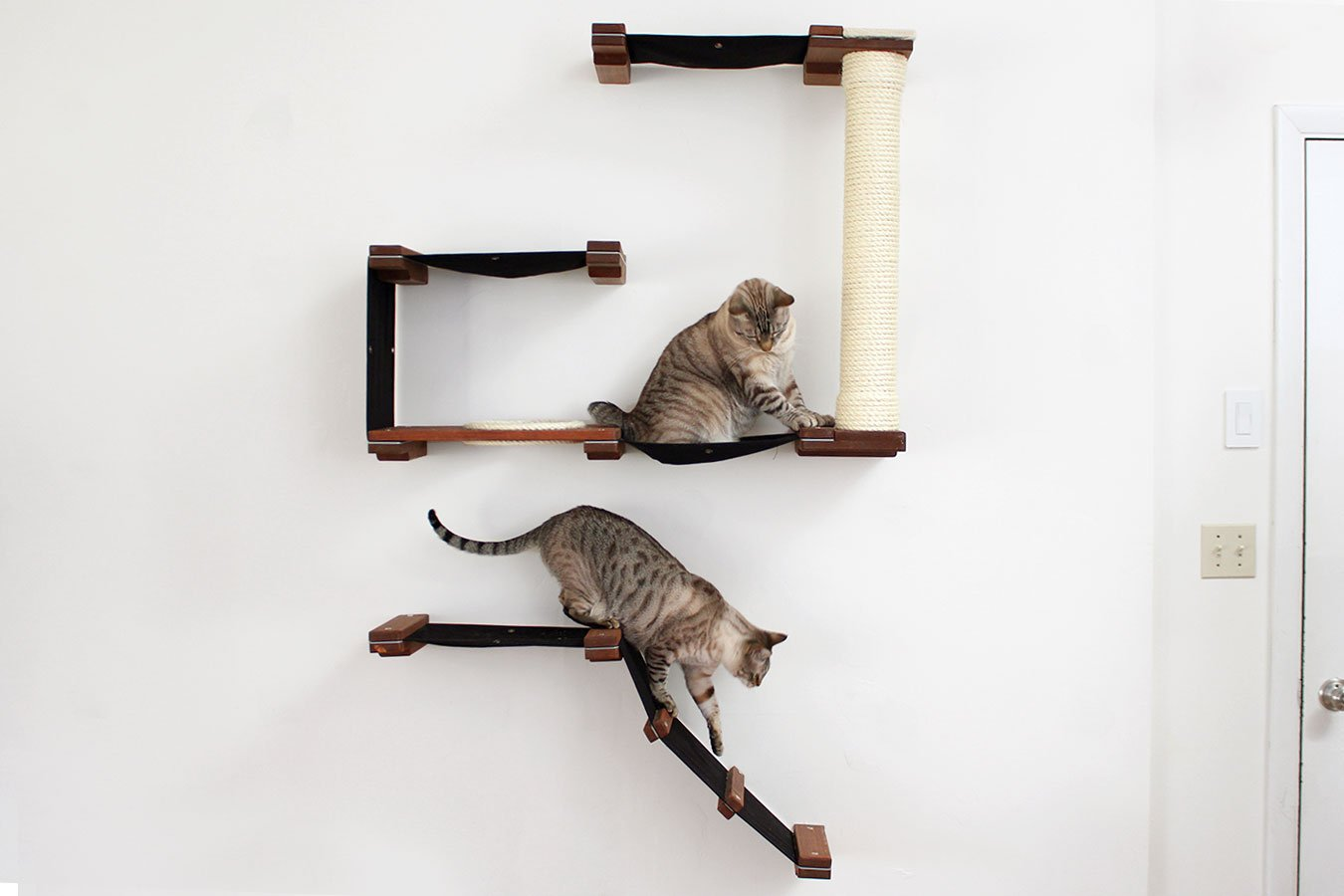 CatastrophiCreations Cat Mod Deluxe Fort Handcrafted Wall mounted Cat Tree Shelves, English Chestnut/Natural, One Size