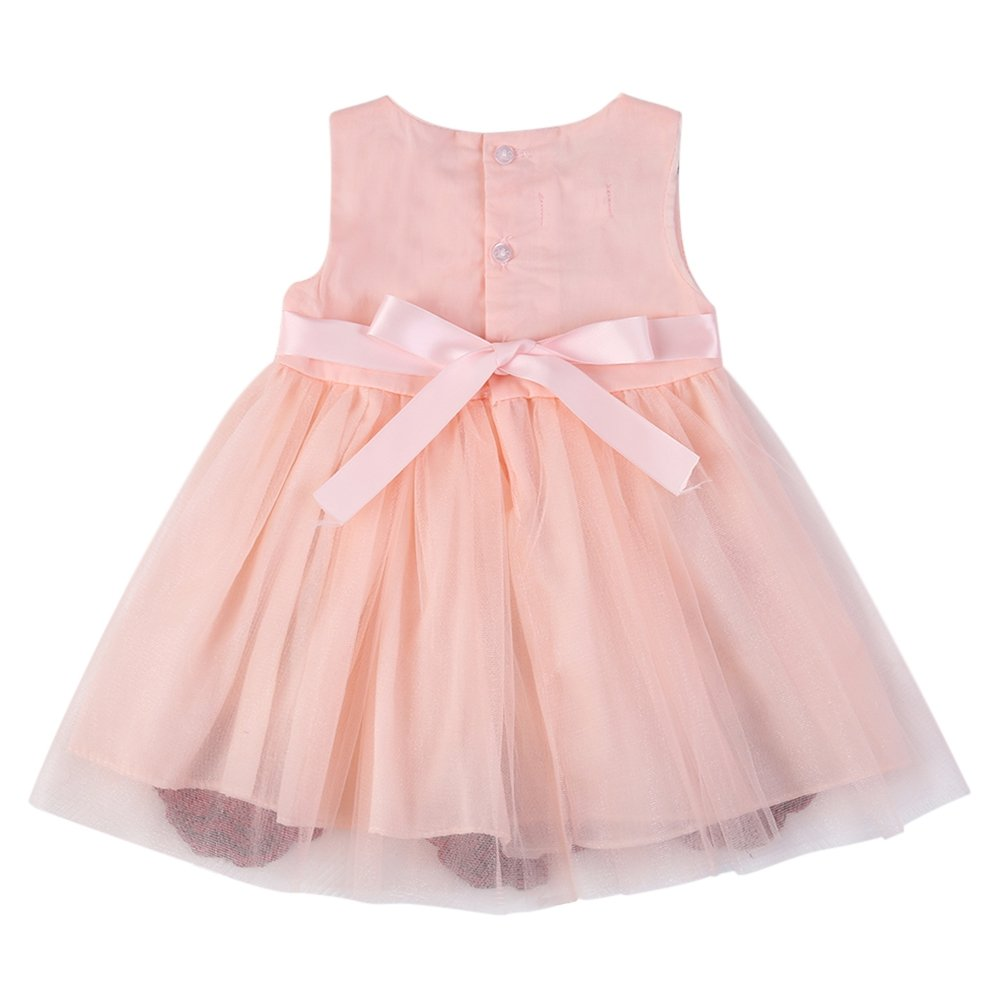 03605bb5ef575 Amazon.com: BOBORA Baby Girls' Rose Lace Mesh Princess Tutu Dress: Clothing