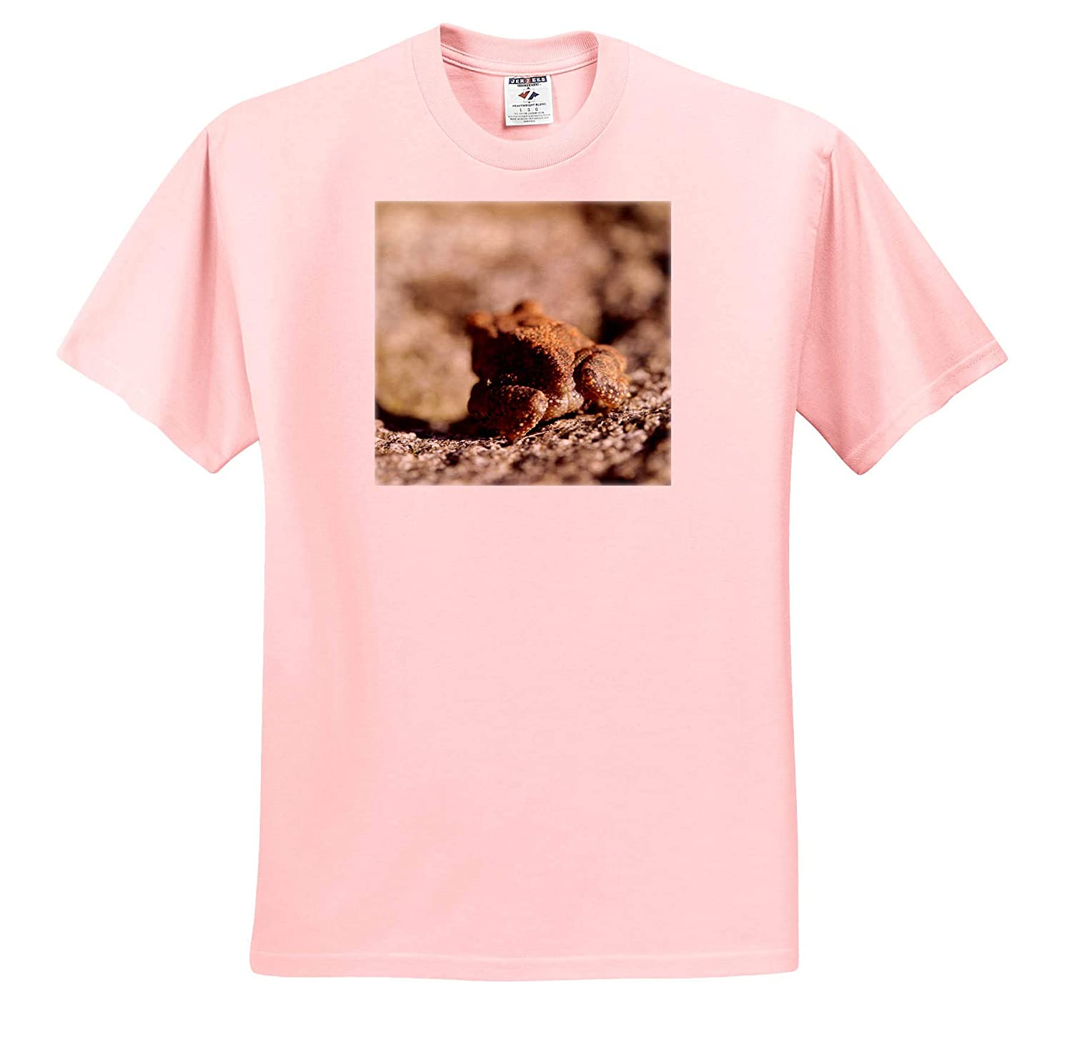 Macro Photograph of The Butt of an American Toad - Adult T-Shirt XL Amphibian ts/_315598 3dRose Stamp City