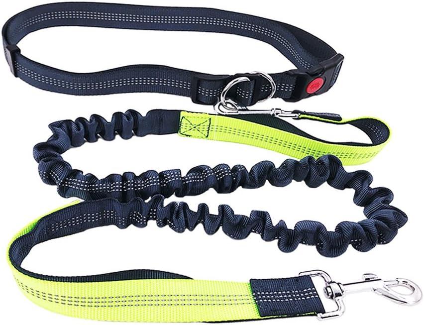 FULARR Correa Manos Libres para Perro, Reflectante Elástica Correa para Perro, Extensible con Cintura Ajustable, Ideal para Correr, Bicicleta, Deporte, Running,Longitud 1.2 a 1.9m (Gris y Verde)