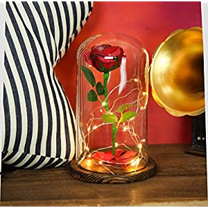 """Beauty and the Beast"" Everlasting Red Rose Flower Led Light with Fallen Petals in a Glass Dome on a Wooden Base 4"