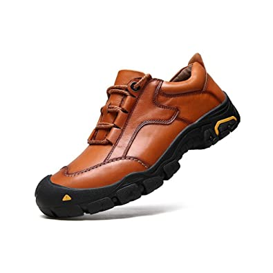 Shoes Mens Casual Shoes Outdoor Trainers Shoes Leather Running Athletic (Color : Brown Size : 42)