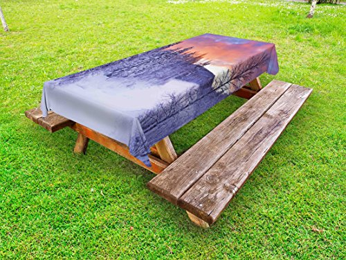 Arctic Sun Tabletop (Ambesonne Winter Outdoor Tablecloth, Frozen River in a Wintry Landscape Finnish Lapland at Sunrise Arctic Nordic Country, Decorative Washable Picnic Table Cloth, 58 X 120 Inches, Multicolor)