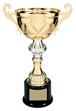 Amazon Gold Silver Metal Cup Trophy