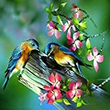 Jollylife Art - 5D Shiny Diamond Painting Kit Embroidery DIY Cross Stitch Colorful for Adults Kids Green Bird, 30x30cm