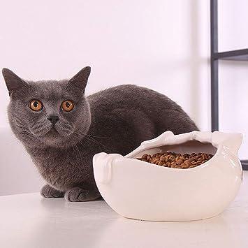 AFDK Cuencos para gatos, cuenco antideslizante para comida para ...