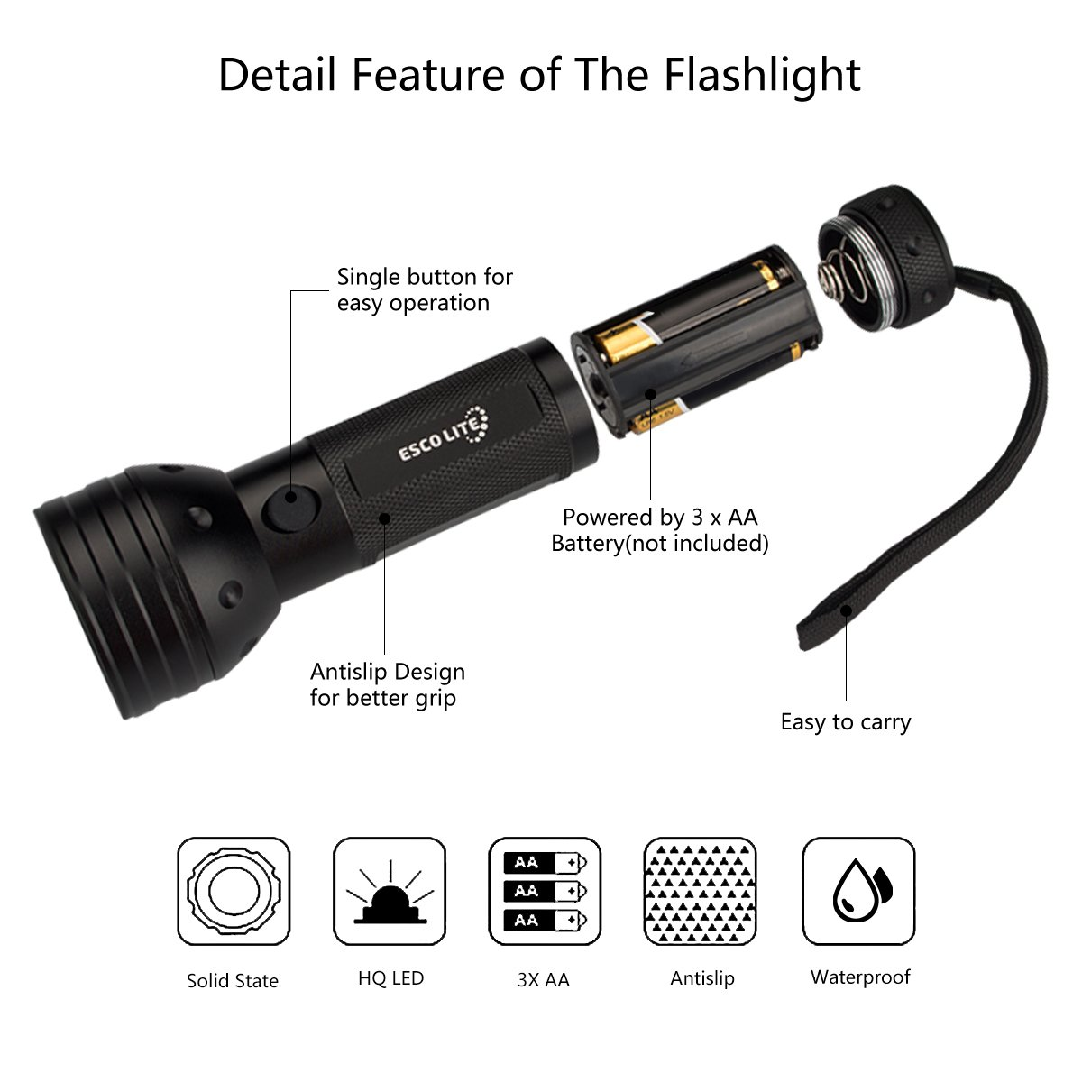 Best Overall UV Flashlight Black Light Detail