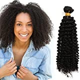 OneDor Unprocessed Virgin Mongolian Afro Kinky Curly Human Hair Weave Extensions for Black Women Natural Black 100g/Bundle (1 Bundle 22