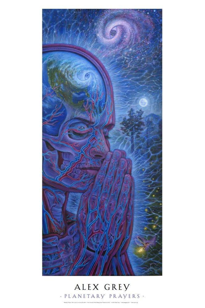 Trippy Alex Grey Abstract Art Print Poster 24x24/'/' inch